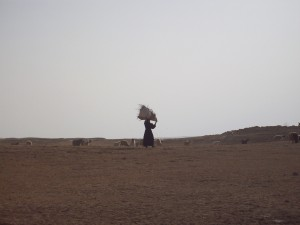 woman in al jazira desert